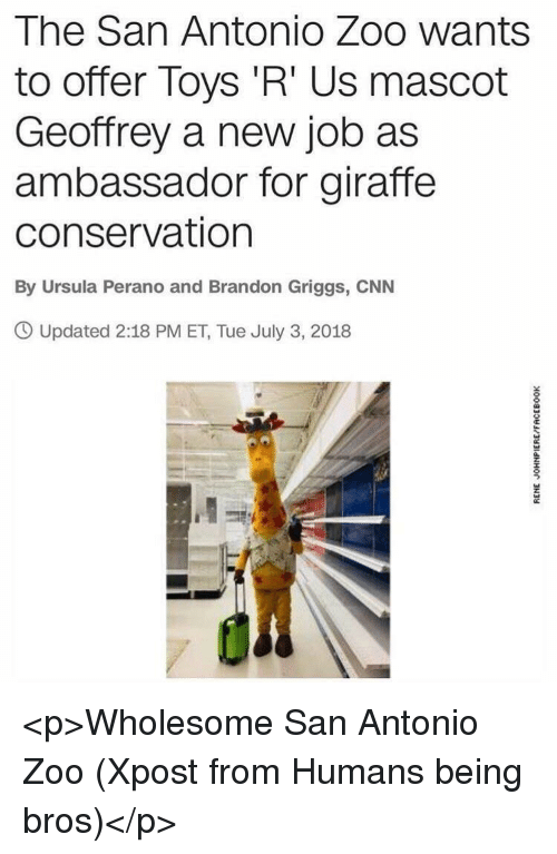cnn.com, Toys R Us, and Giraffe: The San Antonio Zoo wants  to offer Toys 'R' Us mascot  Geoffrey a new job as  ambassador for giraffe  conservation  By Ursula Perano and Brandon Griggs, CNN  O Updated 2:18 PM ET, Tue July 3, 2018 <p>Wholesome San Antonio Zoo (Xpost from Humans being bros)</p>