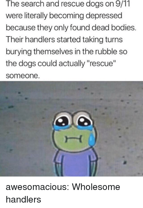 """rubble: The search and rescue dogs on 9/11  were literally becoming depressed  because they only found dead bodies.  Their handlers started taking turns  burying themselves in the rubble so  the dogs could actually """"rescue""""  someone awesomacious:  Wholesome handlers"""
