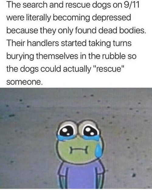 """rubble: The search and rescue dogs on 9/11  were literally becoming depressed  because they only found dead bodies.  Their handlers started taking turns  burying themselves in the rubble so  the dogs could actually """"rescue""""  someone"""