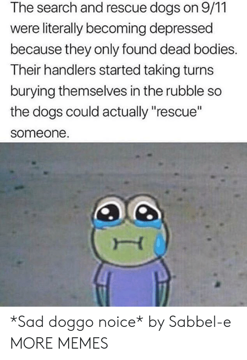 """rubble: The search and rescue dogs on 9/11  were literally becoming depressed  because they only found dead bodies.  Their handlers started taking turns  burying themselves in the rubble so  the dogs could actually """"rescue""""  someone. *Sad doggo noice* by Sabbel-e MORE MEMES"""