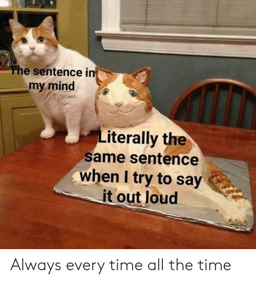 Say It, Time, and Mind: The sentence in  my mind  terally the  same sentence  when I try to say  it out loud Always every time all the time