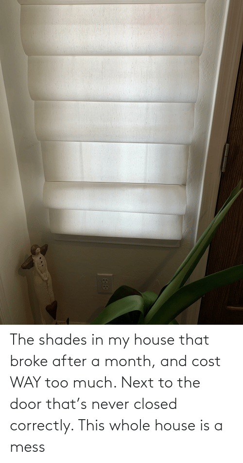 The Door: The shades in my house that broke after a month, and cost WAY too much. Next to the door that's never closed correctly. This whole house is a mess