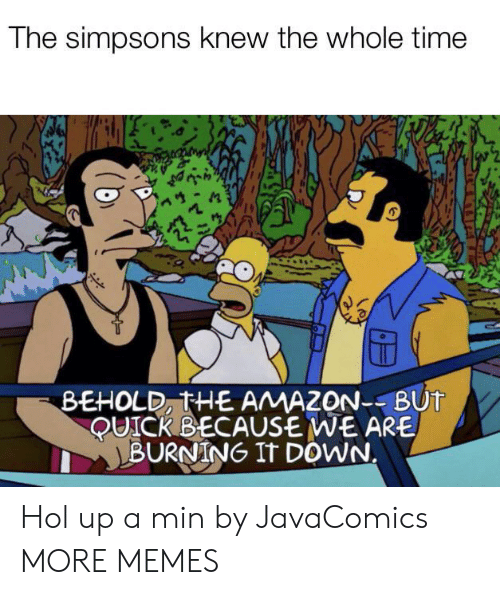 Whole Time: The simpsons knew the whole time  BEHOLD, THE AMAZON--BUT  QUICK BECAUSE WE ARE  BURNING IT DOWN. Hol up a min by JavaComics MORE MEMES