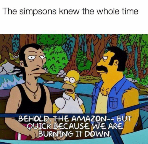 Whole Time: The simpsons knew the whole time  BEHOLD, THE AMAZON--BUT  QUICKBECAUSE WE ARE  BURNING IT DOWN.