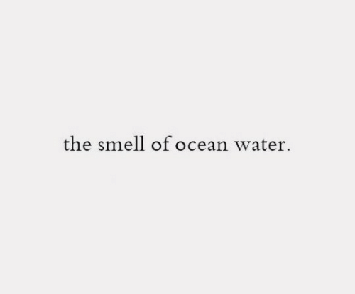 The Smell: the smell of ocean water