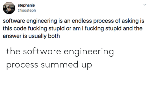 software: the software engineering process summed up