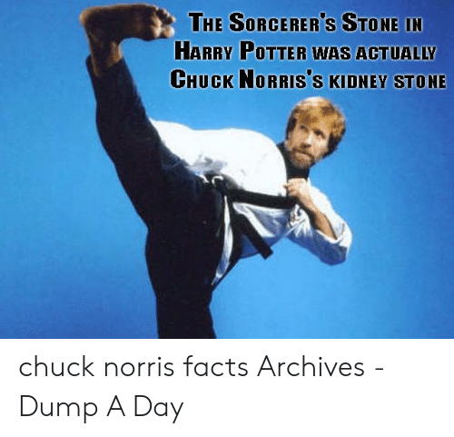 Norris Facts: THE SORCERER'S STONE IN  HARRY POTTER WAS ACTUALLY  CHUCK NORRIS'S KIDNEY STONE chuck norris facts Archives - Dump A Day