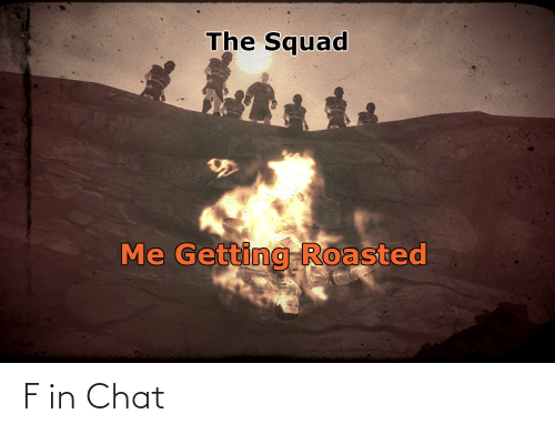 Getting Roasted: The Squad  Me Getting Roasted F in Chat