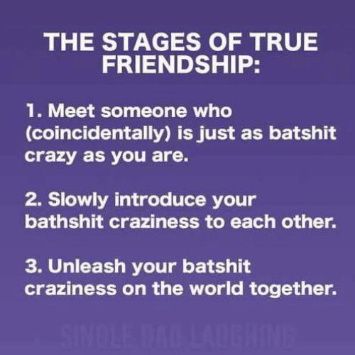 unleash: THE STAGES OF TRUE  FRIENDSHIP:  1. Meet someone who  (coincidentally) is just as batshit  crazy as you are.  2. Slowly introduce your  bathshit craziness to each other.  3. Unleash your batshit  craziness on the world together.  SINDLE DAD LAUGHINE