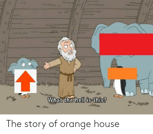 Orange: The story of orange house
