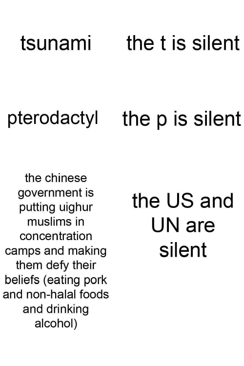 Drinking: the t is silent  tsunami  pterodactyl  the p is silent  the chinese  government is  putting uighur  muslims in  the US and  UN are  concentration  silent  camps and making  them defy their  beliefs (eating pork  and non-halal foods  and drinking  alcohol)