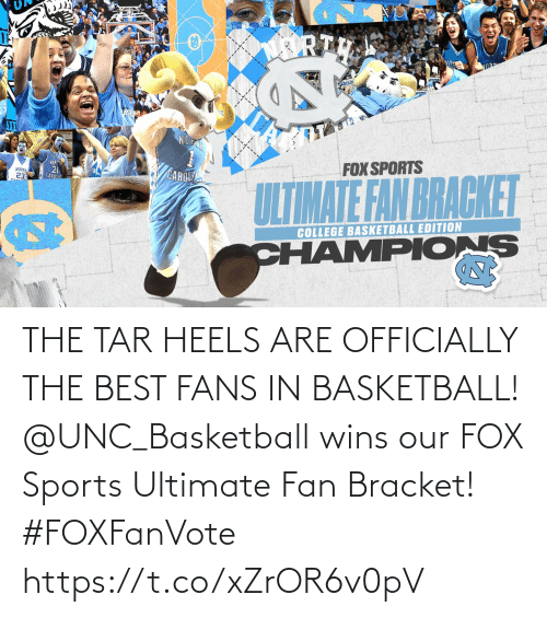 fox: THE TAR HEELS ARE OFFICIALLY THE BEST FANS IN BASKETBALL!  @UNC_Basketball wins our FOX Sports Ultimate Fan Bracket! #FOXFanVote https://t.co/xZrOR6v0pV