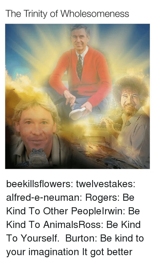 Animals, Tumblr, and Blog: The Trinity of Wholesomeness beekillsflowers:  twelvestakes:   alfred-e-neuman: Rogers: Be Kind To Other PeopleIrwin: Be Kind To AnimalsRoss: Be Kind To Yourself.  Burton: Be kind to your imagination   It got better