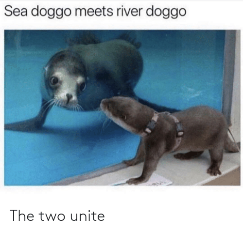 The: The two unite