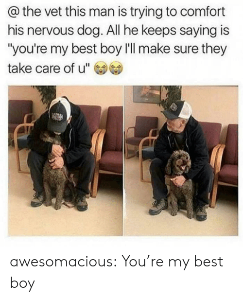 """comfort: @the vet this man is trying to comfort  his nervous dog. All he keeps saying is  """"you're my best boy l'll make sure they  take care of u"""" awesomacious:  You're my best boy"""