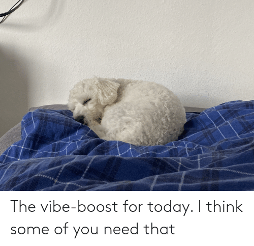 The Vibe: The vibe-boost for today. I think some of you need that