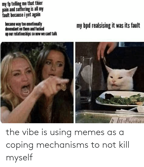 The Vibe: the vibe is using memes as a coping mechanisms to not kill myself