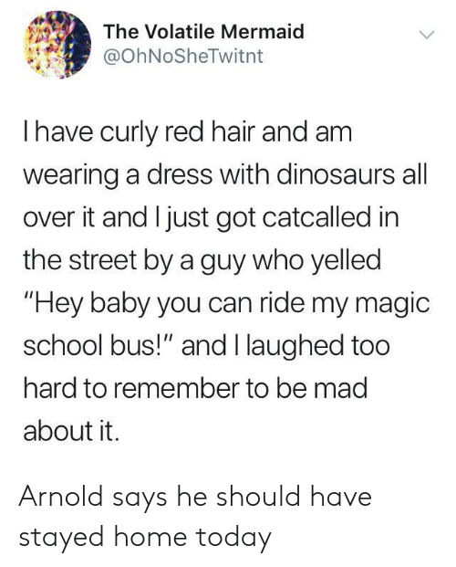 "School, Dinosaurs, and Dress: The Volatile Mermaid  @OhNoSheTwitnt  Ihave curly red hair and am  wearing a dress with dinosaurs all  over it and I just got catcalled in  the street by a guy who yelled  ""Hey baby you can ride my magic  school bus!"" and I laughed too  hard to remember to be mad  about it. Arnold says he should have stayed home today"