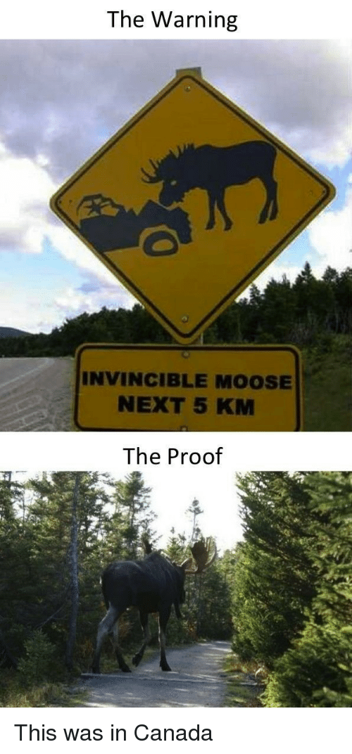 Canada, Proof, and Moose: The Warning  INVINCIBLE MOOSE  NEXT 5 KM  The Proof This was in Canada