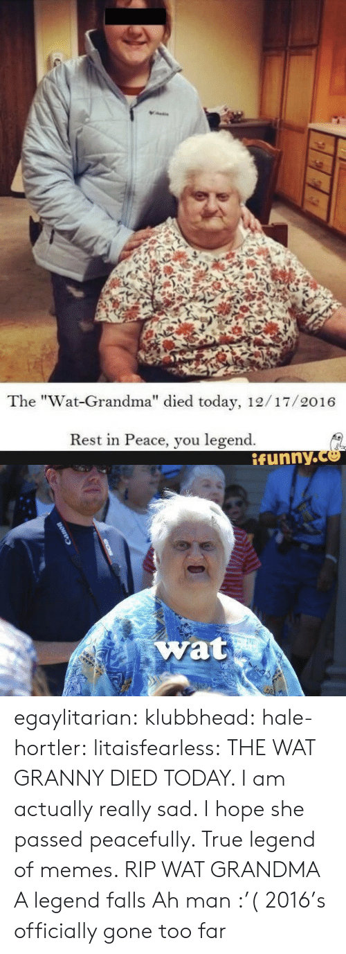 """Wat Grandma: The """"Wat-Grandma"""" died today, 12/17/2016  Rest in Peace, you legend.  ifynny.co  1   wat egaylitarian:  klubbhead:   hale-hortler:   litaisfearless: THE WAT GRANNY DIED TODAY. I am actually really sad. I hope she passed peacefully. True legend of memes. RIP WAT GRANDMA A legend falls   Ah man :'(   2016's officially gone too far"""