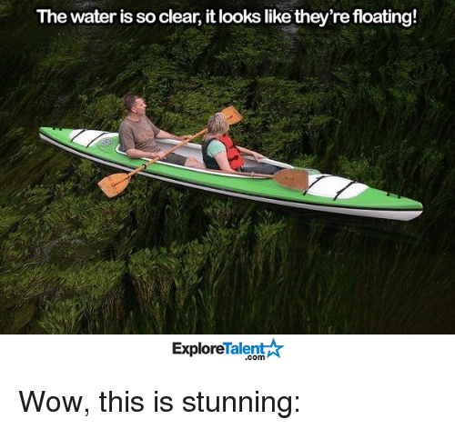 Memes, 🤖, and Talent: The water is so clear, it looks like they're floating!  Talent  Explore Wow, this is stunning: