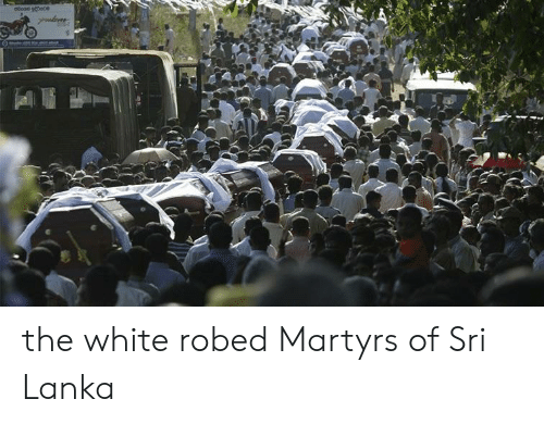 White, Sri Lanka, and Martyrs: the white robed Martyrs of Sri Lanka