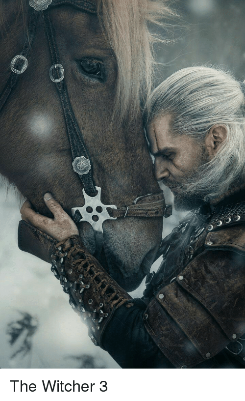 witcher 3: The Witcher 3