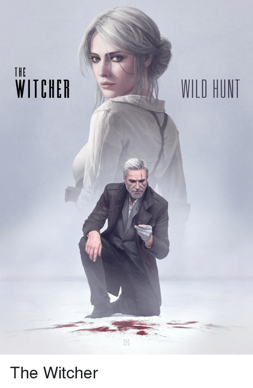 the witcher wild hunt: THE  WITCHER  WILD HUNT  Al R  A R The Witcher