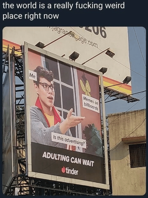 Me Memes: the world is a really fucking weird  place right now  agrapegage.com  Me  Memes on  billboards  Is this advertising?  ADULTING CAN WAIT  tinder
