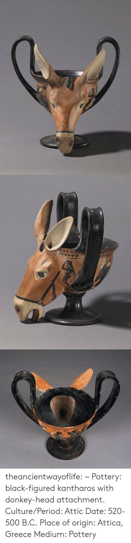 Attachment: theancientwayoflife:  ~ Pottery: black-figured kantharos with donkey-head attachment. Culture/Period: Attic Date: 520-500 B.C. Place of origin: Attica, Greece Medium: Pottery