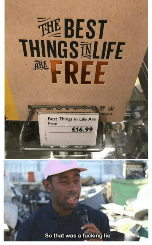 guide: THEBEST  THINGSNLIFE  FREE  ARE  GUIDE  Best Things in Life Are  Free  £16.99  Dass  appeal  So that was a fucking lie.