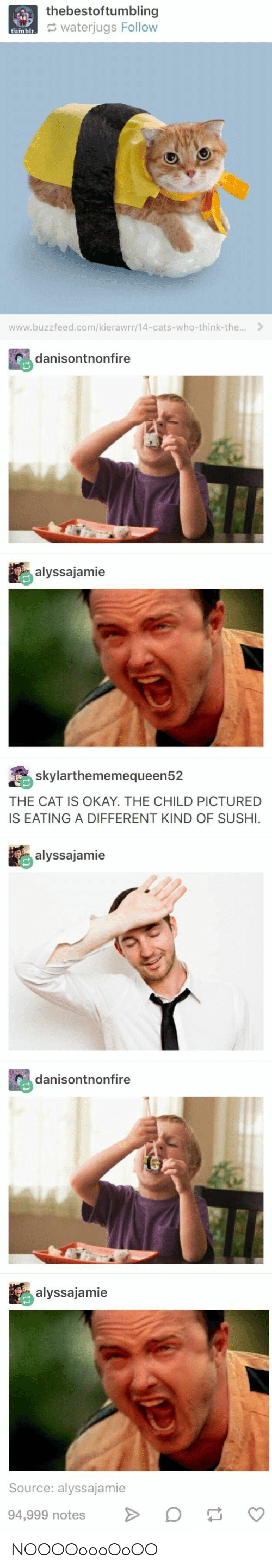 Cats, Tumblr, and Buzzfeed: thebestoftumbling  waterjugs Follow  tumblr  www.buzzfeed.com/kierawrr/14-cats-who-think-the...  danisontnonfire  alyssajamie  skylarthememequeen52  THE CAT IS OKAY. THE CHILD PICTURED  IS EATING A DIFFERENT KIND OF SUSHI.  alyssajamie  danisontnonfire  alyssajamie  Source: alyssajamie  94,999 notes  tl NOOOOoooOoOO