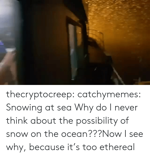 Https Www Facebook Com: thecryptocreep: catchymemes: Snowing at sea Why do I never think about the possibility of snow on the ocean???Now I see why, because it's too ethereal