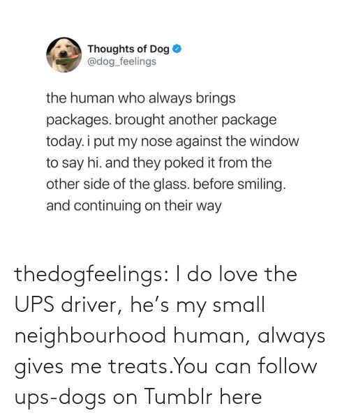 You Can: thedogfeelings:  I do love the UPS driver, he's my small neighbourhood human, always gives me treats.You can follow ups-dogs on Tumblr here