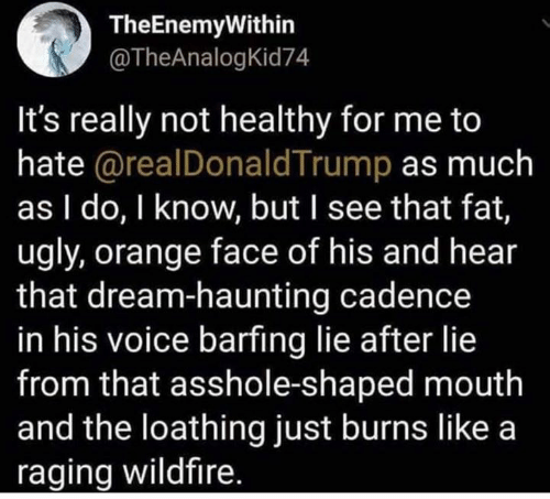 Memes, Ugly, and Orange: TheEnemyWithin  @TheAnalogKid74  It's really not healthy for me to  hate @realDonaldTrump as much  as I do, I know, but I see that fat,  ugly, orange face of his and hear  that dream-haunting cadence  in his voice barfing lie after lie  from that asshole-shaped mouth  and the loathing just burns like a  raging wildfire.
