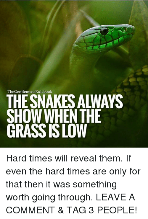 Grasse: TheGentlemensRulebook  THE SNAKES ALWAYS  SHOW WHENTHE  GRASS IS LOW Hard times will reveal them. If even the hard times are only for that then it was something worth going through. LEAVE A COMMENT & TAG 3 PEOPLE!