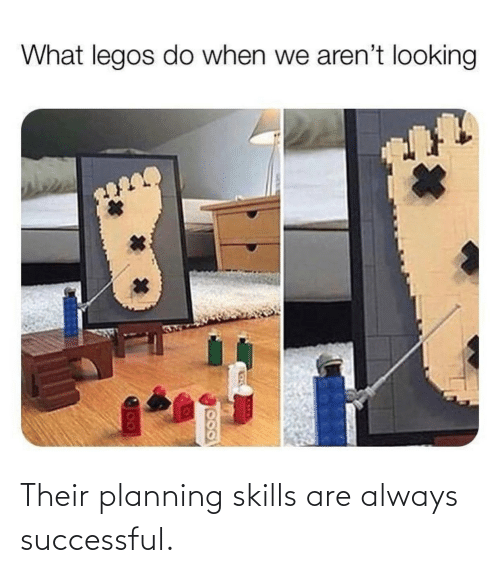 their: Their planning skills are always successful.