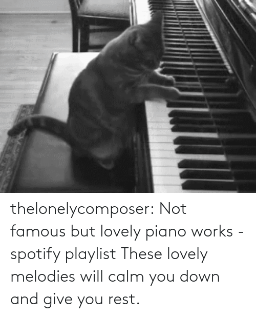 Give: thelonelycomposer: Not famous but lovely piano works -spotify playlist These lovely melodies will calm you down and give you rest.