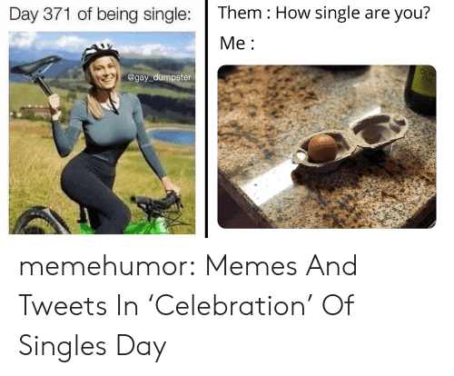 Being Single: Them How single are you?  Day 371 of being single:  Ме:  OLIV  OIL  @gay dumpster memehumor:  Memes And Tweets In 'Celebration' Of Singles Day