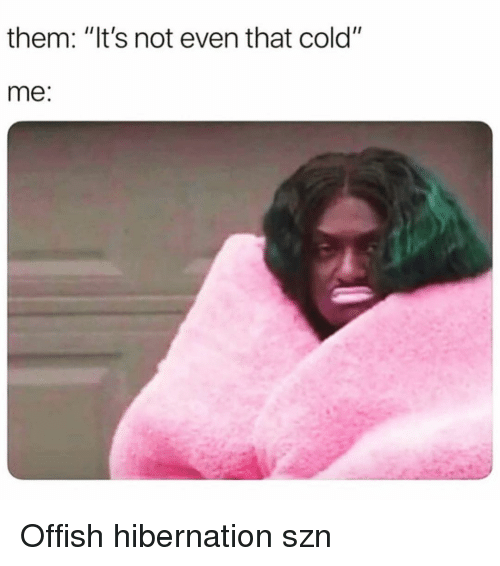 "Girl Memes, Cold, and Them: them: ""It's not even that cold""  me: Offish hibernation szn"