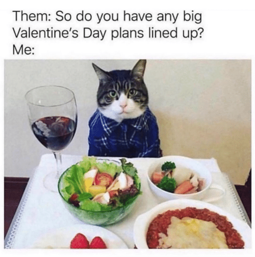 Valentine's Day, Big, and Day: Them: So do you have any big  Valentine's Day plans lined up?  Me: