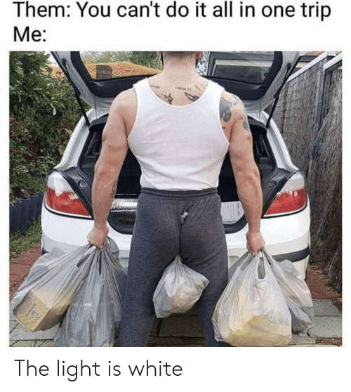 all in one: Them: You can't do it all in one trip  Me The light is white