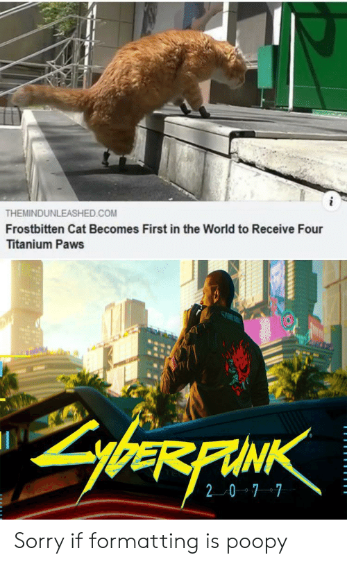 Paws: THEMINDUNLEASHED.COM  Frostbitten Cat Becomes First in the World to Receive Four  Titanium Paws  SAM  ybeRFAINK  20 7 7 Sorry if formatting is poopy