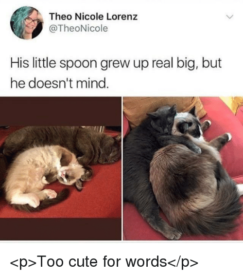 little spoon: Theo Nicole Lorenz  @TheoNicole  His little spoon grew up real big, but  he doesn't mind <p>Too cute for words</p>