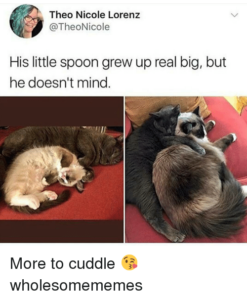 little spoon: Theo Nicole Lorenz  @TheoNicole  His little spoon grew up real big, but  he doesn't mind. More to cuddle 😘 wholesomememes