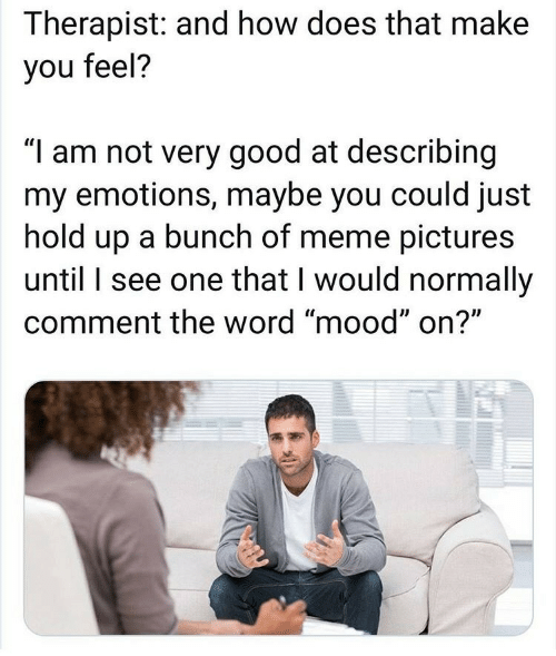 "hold: Therapist: and how does that make  you feel?  ""I am not very good at describing  my emotions, maybe you could just  hold up a bunch of meme pictures  until I see one that I would normally  comment the word ""mood"" on?"""