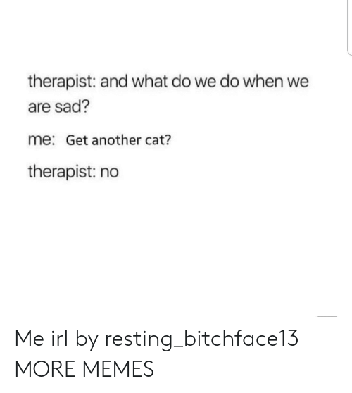 Resting: therapist: and what do we do when we  are sad?  me: Get another cat?  therapist: no Me irl by resting_bitchface13 MORE MEMES