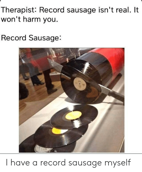 Record, Sausage, and You: Therapist: Record sausage isn't real. It  won't harm you.  Record Sausage: I have a record sausage myself