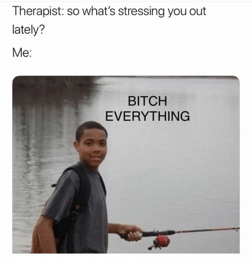 Bitch, You, and Whats: Therapist: so what's stressing you out  lately?  Me:  BITCH  EVERYTHING