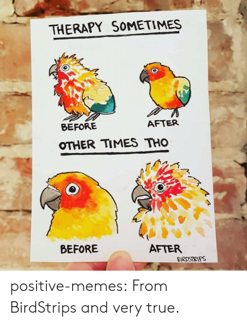 very true: THERAPY SOMETIMES  BEFORE  AFTER  OTHER TIMES THO  BEFORE  AFTER  BIRDSIRIPS positive-memes: From BirdStrips and very true.
